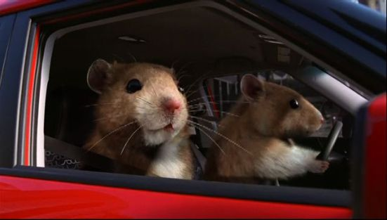 Kia Hamsters, Kia Motors USA